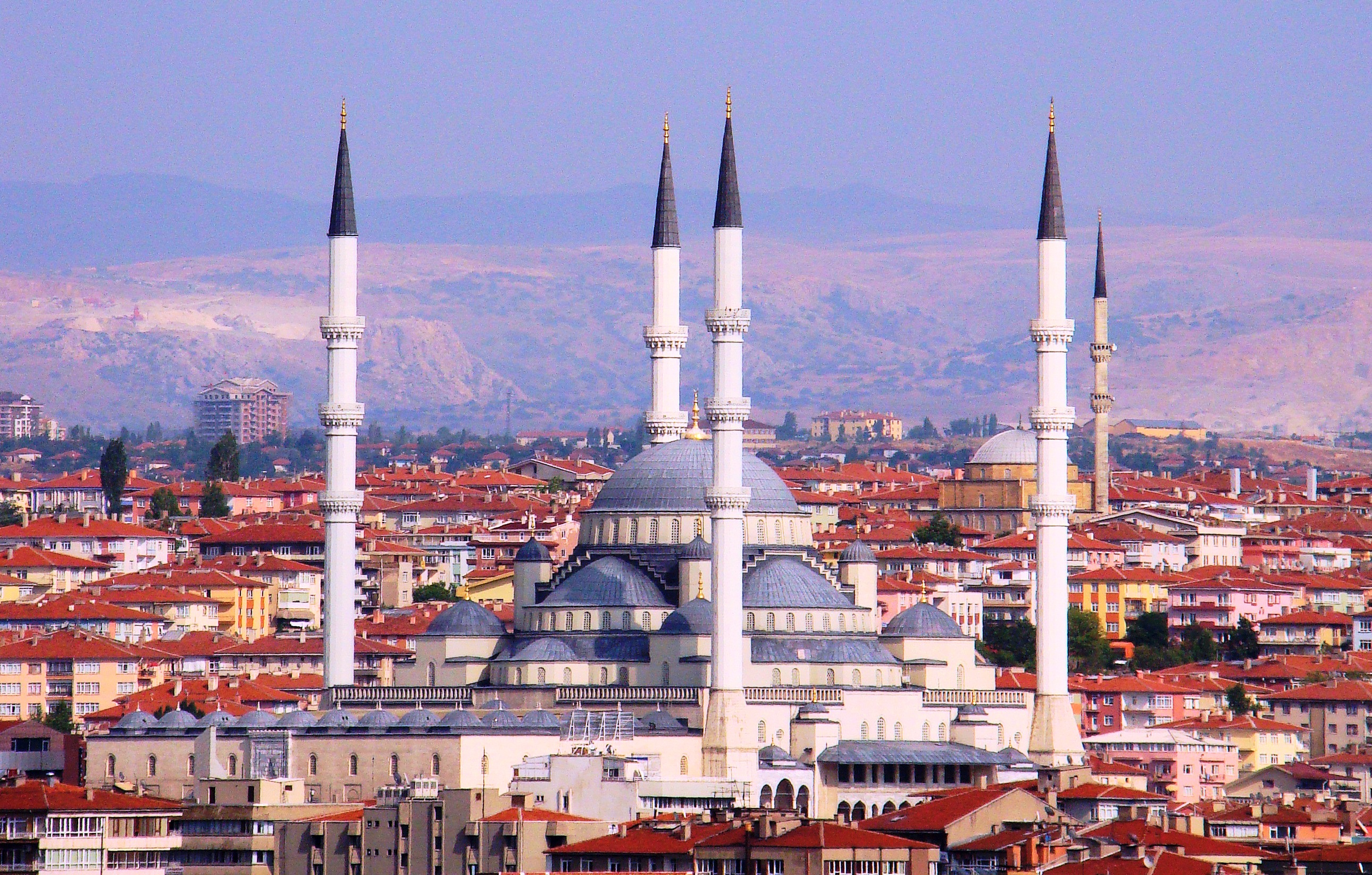 Country Monitoring: Turkish business cycle update
